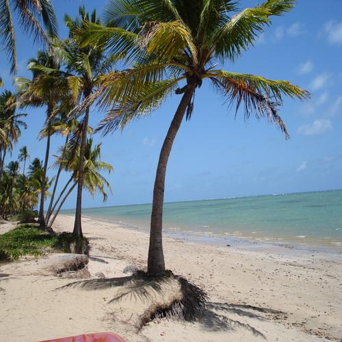 O que fazer na Praia do Patacho