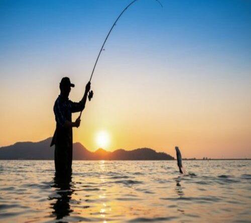 Turismo da Pesca Esportiva: Detalhes do esporte e como se pratica